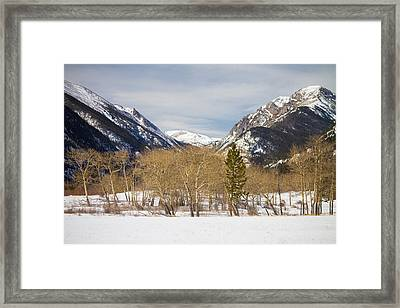 Colorado Rocky Mountain Winter Horseshoe Park Framed Print by James BO  Insogna