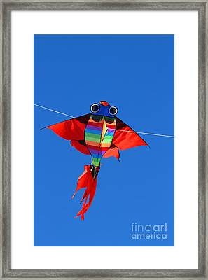 Colorful Kite That Flies High In The Sky Blue Framed Print by Federico Candoni
