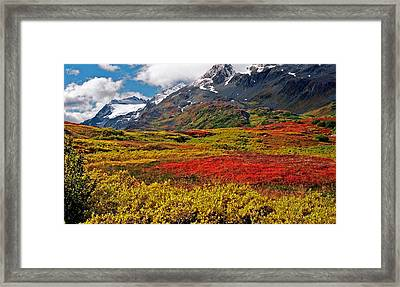 Colorful Land - Alaska Framed Print by Juergen Weiss