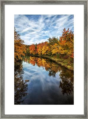 Colorful Reflection Framed Print by Mark Papke