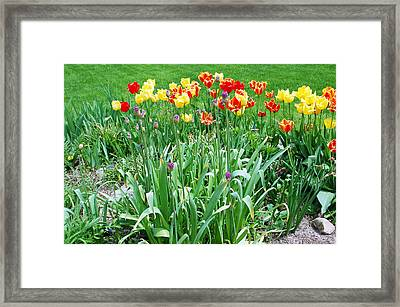 Colorful Spring Framed Print by Aimee L Maher Photography and Art Visit ALMGallerydotcom