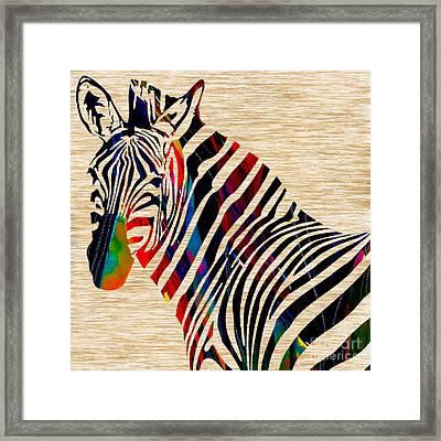 Colorful Zebra Framed Print by Marvin Blaine