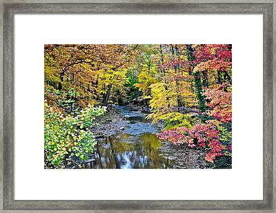 Colors Galore Framed Print by Frozen in Time Fine Art Photography
