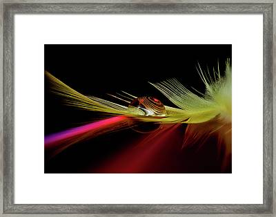 Colors In The Drop Framed Print by Aida Ianeva