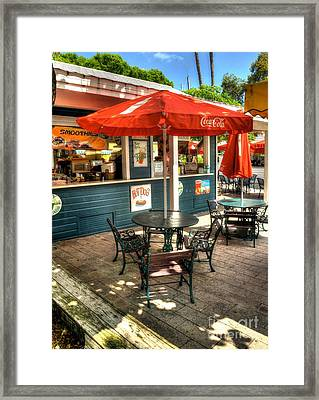 Colors Of Key West 4 Framed Print by Mel Steinhauer
