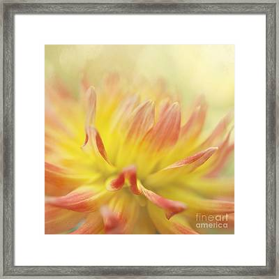 Colors Of Late Summer Framed Print by Beve Brown-Clark Photography