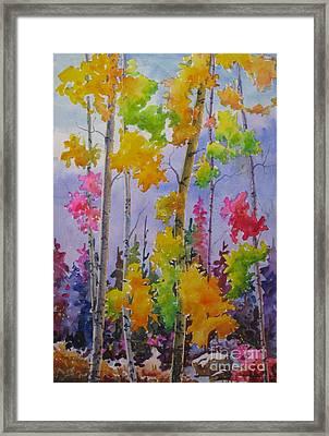 Colours Of Fall Framed Print by Mohamed Hirji