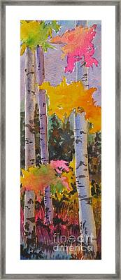 Colours Of The Rainbow Framed Print by Mohamed Hirji