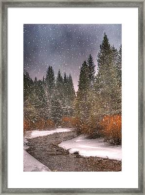 Colours Of Winter Framed Print by Juli Scalzi