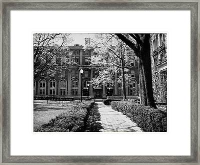 Columbia College Walk Framed Print by Georgia Fowler