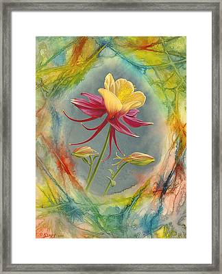 'columbine In Abstract' Framed Print by Paul Krapf