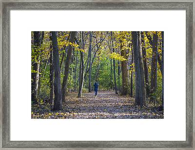Come For A Walk Framed Print by Sebastian Musial