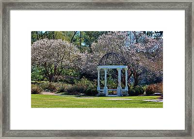 Come Into The Garden Framed Print by Cynthia Guinn
