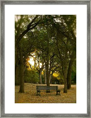 Come Sit Awhile Framed Print by Michele Myers
