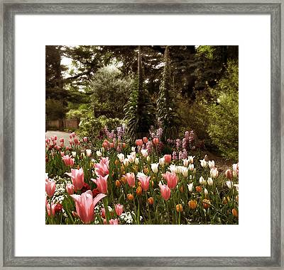 Come What May Framed Print by Jessica Jenney