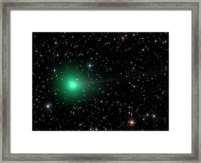 Comet C2013 R1 Framed Print by Damian Peach
