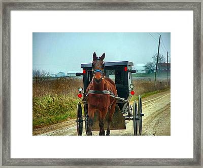 Coming My Way Framed Print by Julie Dant