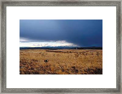 Coming Snow Framed Print by Terry Reynoldson