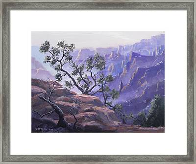 Commanding View Framed Print by Jerry McElroy