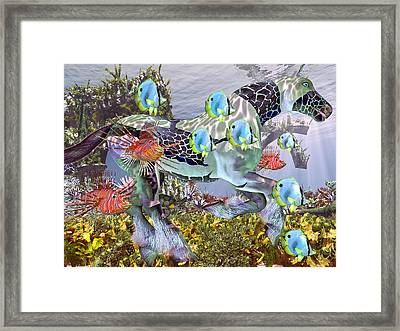 Common Ground Framed Print by Betsy C Knapp