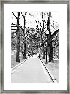 Commons Park Pathway Framed Print by Scott Pellegrin