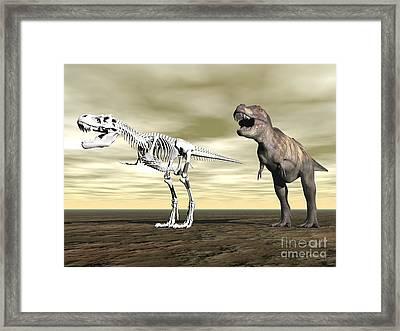 Comparison Of Tyrannosaurus Rex Framed Print by Elena Duvernay