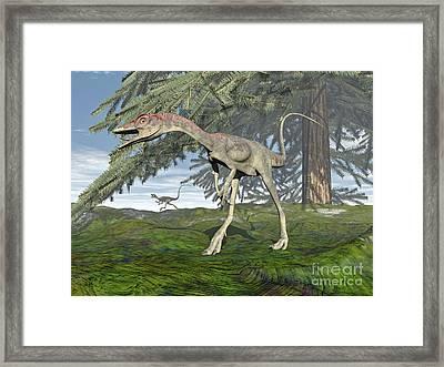 Compsognathus Dinosaur Under Fir Tree Framed Print by Elena Duvernay