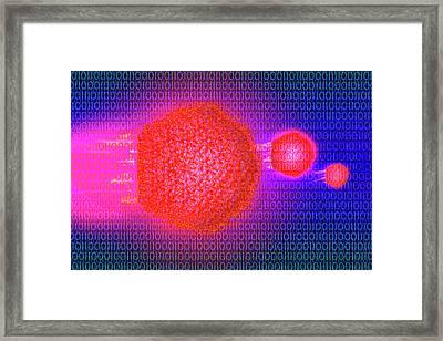 Computer Virus Framed Print by Carol & Mike Werner