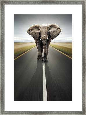 Heavy Duty Transport / Travel By Road Framed Print by Johan Swanepoel