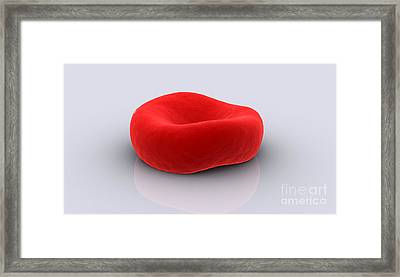 Conceptual Image Of A Red Blood Cell Framed Print by Stocktrek Images