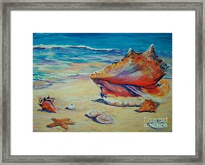 Conch Shell Framed Print by John Clark