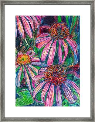Coneflower Twirl Framed Print by Kendall Kessler