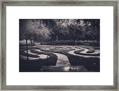 Confusion Framed Print by Laurie Search