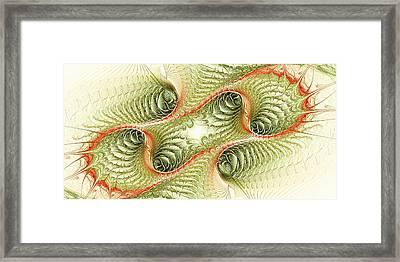 Conjugation Framed Print by Anastasiya Malakhova