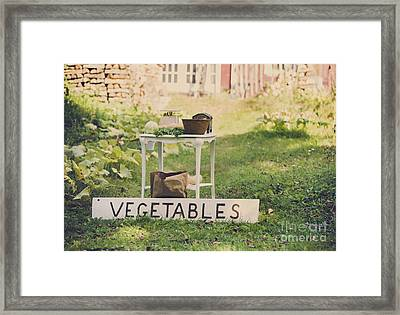 Connecticut Vegetable Stand Framed Print by Diane Diederich