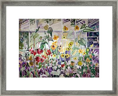 Conservatory Sunflowers Framed Print by Mindy Newman