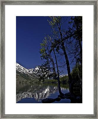 Contemplate This Framed Print by SEA Art
