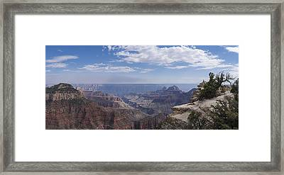 Contemplation Framed Print by Mike Herdering