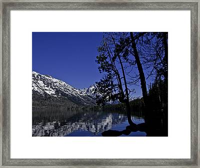 Contemplation Framed Print by SEA Art