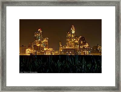 Contradiction Framed Print by Isaac Silman