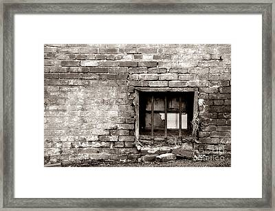 Contrary To Fact Framed Print by Megan Stahl