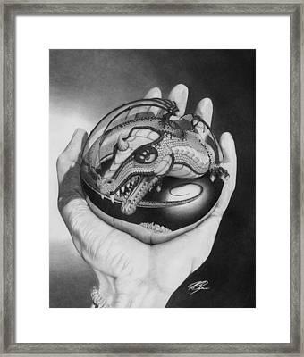 Control Framed Print by Joe Burgess