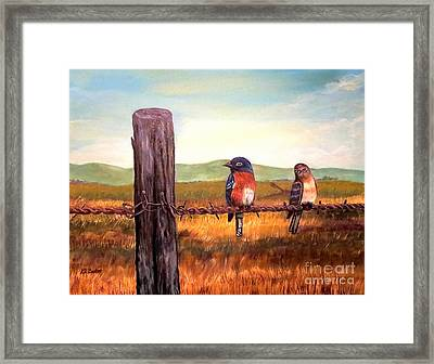 Conversation With A Fencepost Framed Print by Kimberlee Baxter