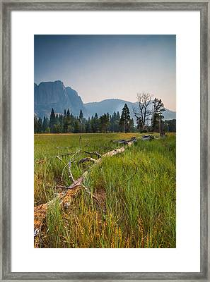Cook's Meadow Framed Print by Mike Lee