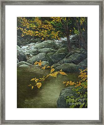 Cool And Shady Framed Print by Jack Hedges