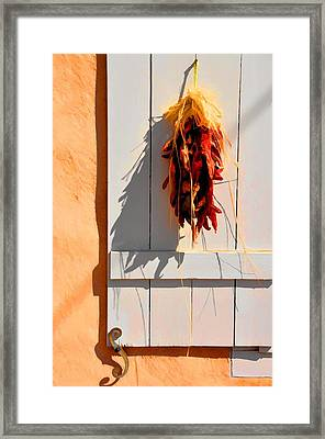 Cool Shadows Hot Chilies Framed Print by Jan Amiss Photography
