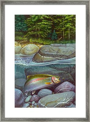 Coolwaters Rainbow Trout Framed Print by Jon Q Wright