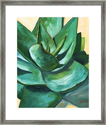 Coral Aloe 1 Framed Print by Athena Mantle