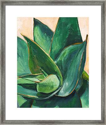 Coral Aloe 3 Framed Print by Athena Mantle