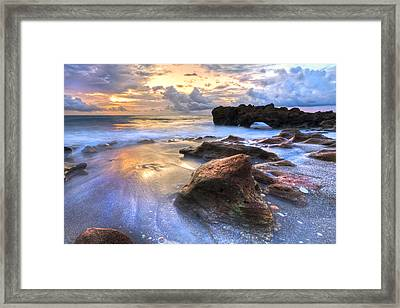 Coral Garden Framed Print by Debra and Dave Vanderlaan
